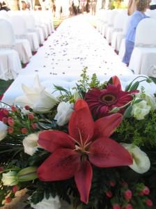 Decoración con alfombra blanca y pétalos rojos