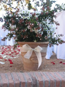 Detalle de decoración completa de boda civil