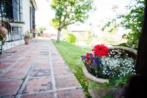 Detalle floral en el Rancho donde se celebró la boda.